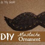 DIY Mustache Ornament