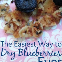 Save money and time by using this fool-proof, healthy way to dry blueberries... no extra equipment needed.