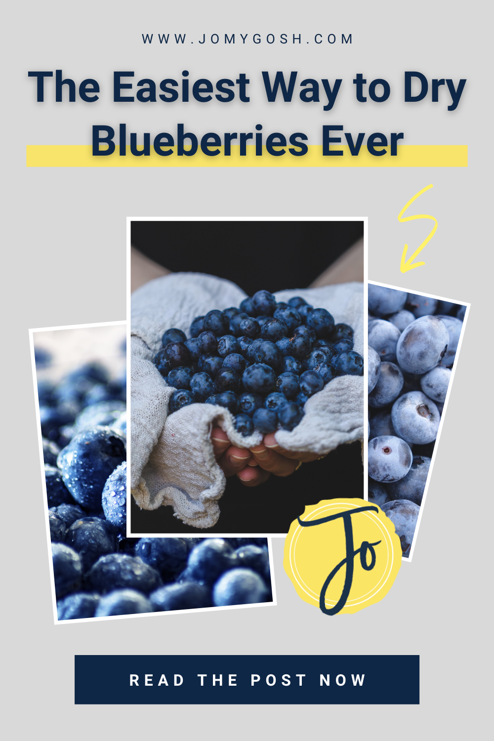 Save money and time by using this fool-proof, healthy way to dry blueberries... no extra equipment needed. #cooking #diy #blueberries #driedfruit #eathealthy #healthyeating #dryingfruit #homesteading