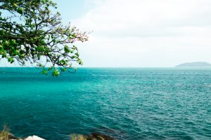 If you've received military orders to Okinawa or might in the future, read this guide from a military spouse who spent three years on the tropical Japanese island. #japan #okinawa #oki #navy #marines #usnavy #usmarines #militaryfamily #milfam #milspouse #milspouses #pcs #pcsing #moving #milso #milsos #milspo #milspos